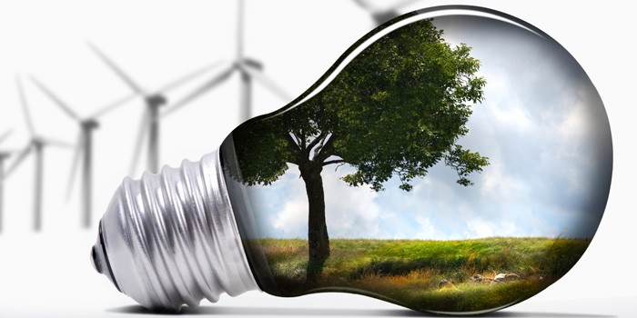 Website-Article-Image---Green-Lightbulb